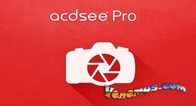 ACDSee Photo Studio Professional 2019 (RUS) скачать бесплатно