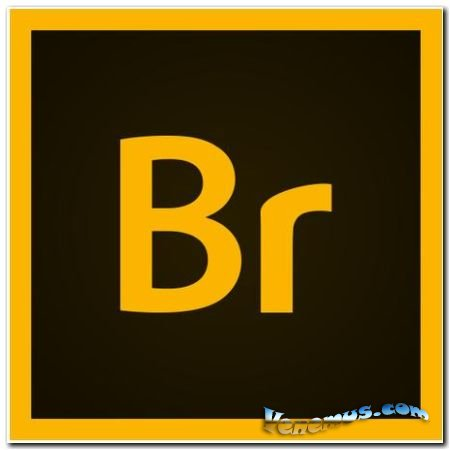 Adobe Bridge CC 2020 (на русском)