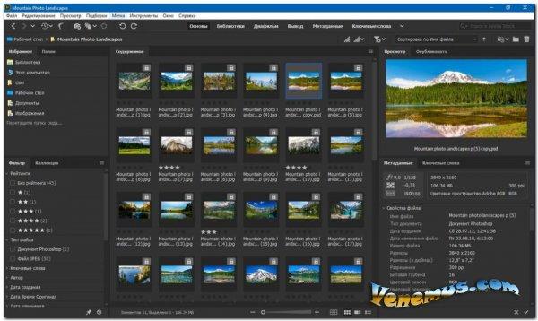 Adobe Bridge CC 2020 (на русском)